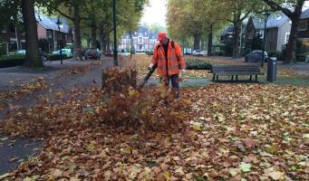 De bladeren vallen