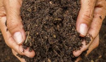 Gratis compost halen bij Ecopark De Limes