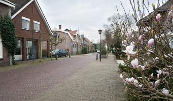 De Dorpsstraat in Benthuizen