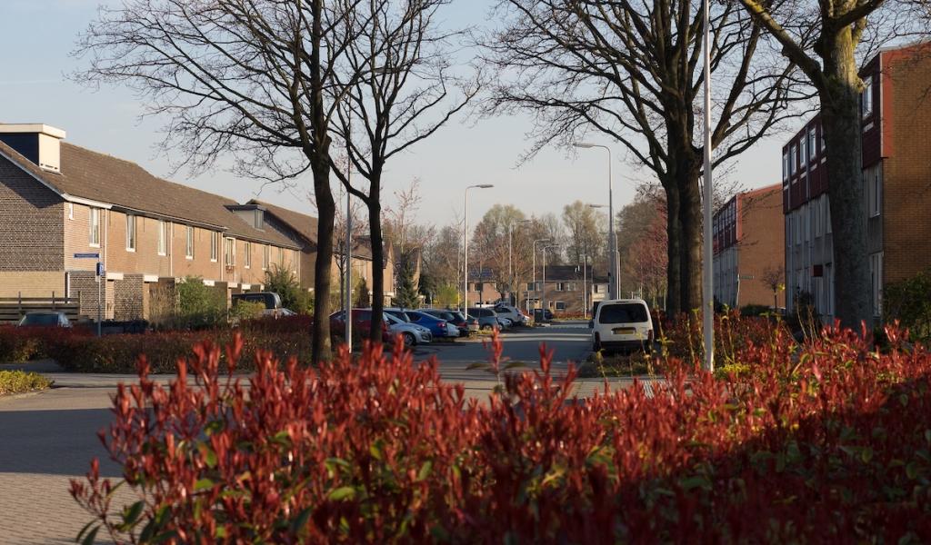 Boterbloemweg in Alphen aan den Rijn