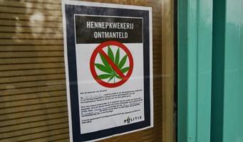 Hennepkwekerij ontdekt in flatwoning Herculesstraat