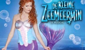 De Kleine Zeemeermin De Musical 4+