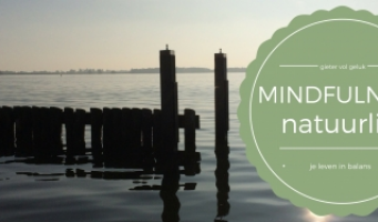8-weekse Mindfulness Training