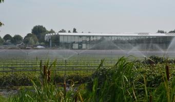 Greenport blij met plannen gemeente Alphen