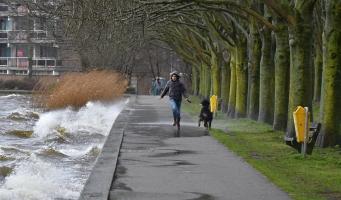 KNMI geeft 'code geel' af voor zware windstoten
