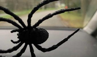 Politie opgeroepen voor 'gevaarlijke plastic spin'