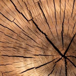 lumber-84678_960_720.jpg
