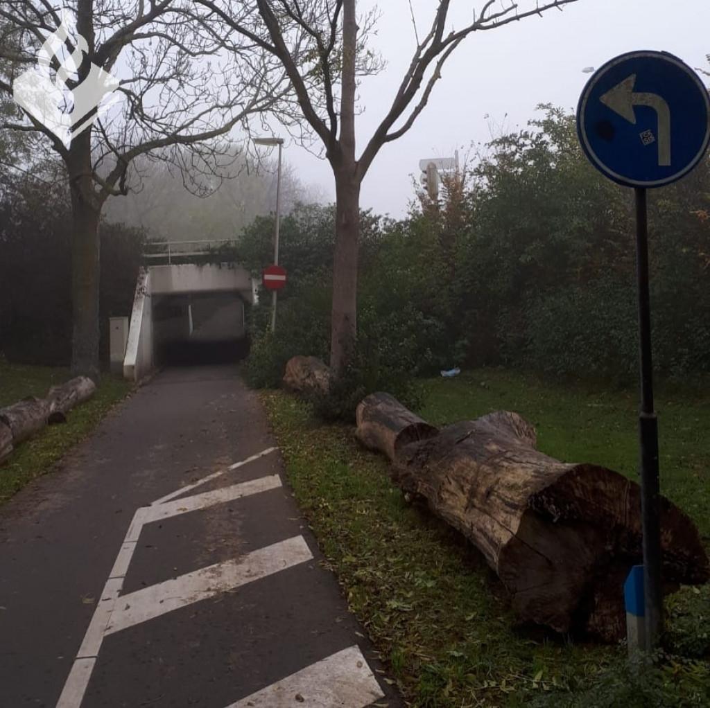 fietstunnelpbl.jpg
