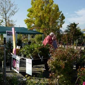 Botanische Dagen bij Esveld