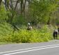 Omgewaaide boom verspert rijbaan