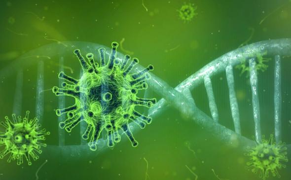 Nieuwe coronabesmettingen: totaal over de 40 besmettingen
