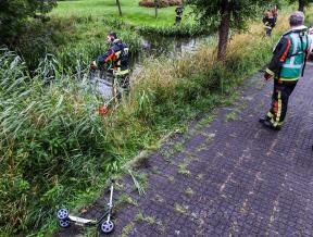 Stepje gevonden langs de sloot Cornelis Geellaan